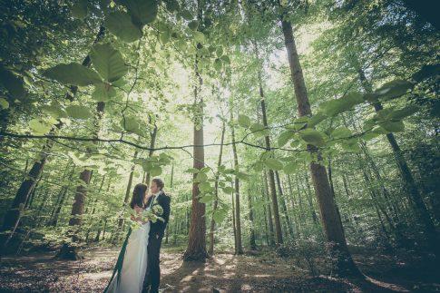 Brautpaar im Wald am Ellernteich in Rastede in Niedersachsen