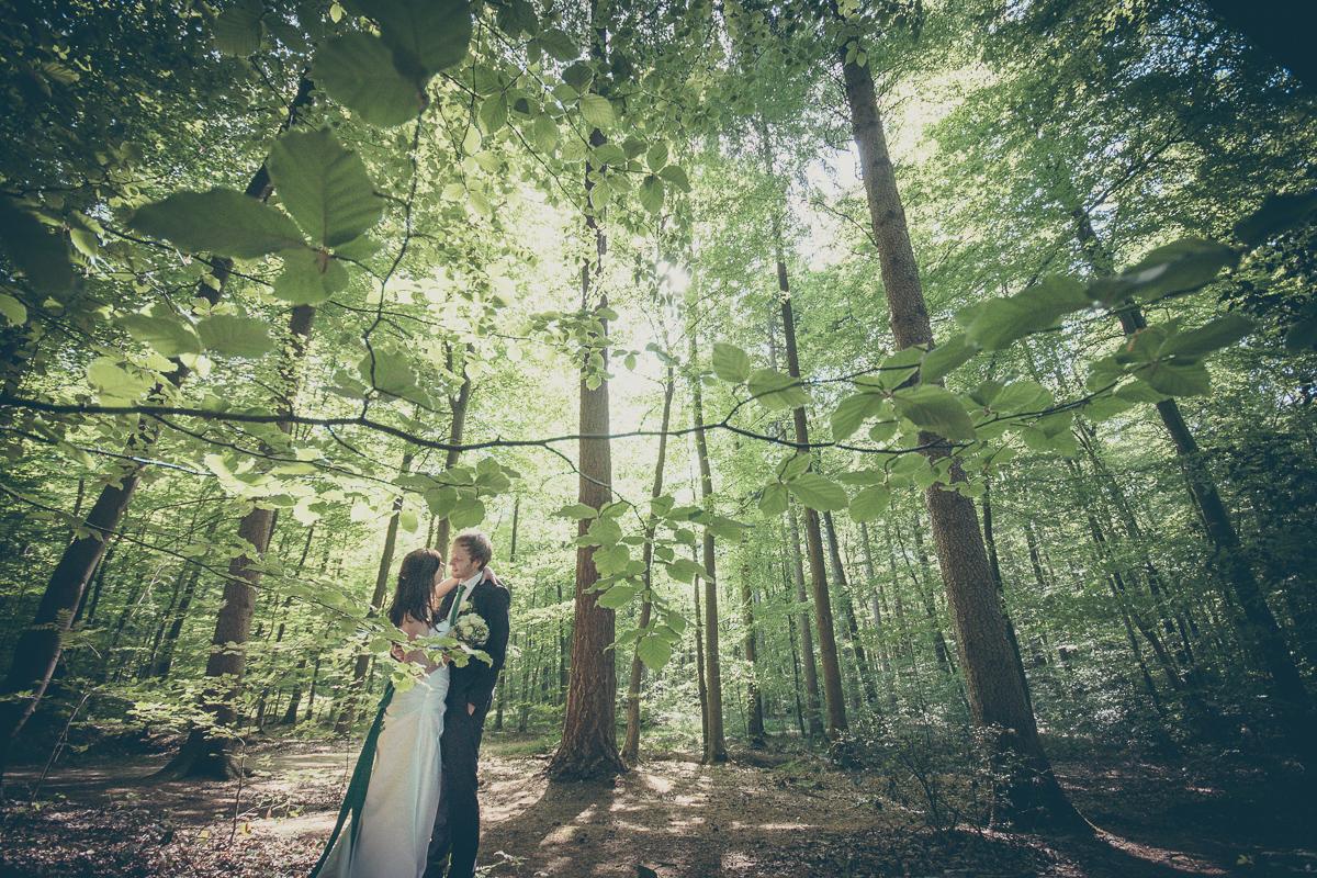 Brautpaarshooting im Wald in Rheinland-Pfalz - Hochzeitsbilder von Hochzeitsfotograf
